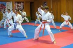 II.seminář Okinawského Ryuei - ryu Kobuda